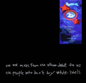 Bjork ‎/ The Best Mixes From The Album-Debut For All The People Who Don't Buy White-Labels
