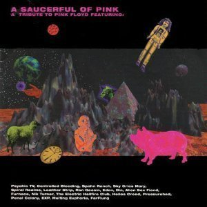 V.A. / Saucerful of Pink - Tribute to Pink Floyd (2CD)